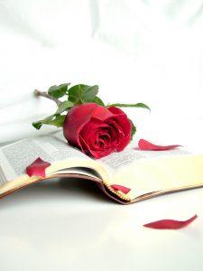 rose on Bible